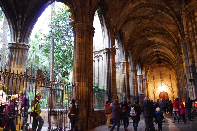 catedral6