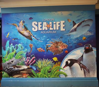 SEALIFE_London_Aquarium_3