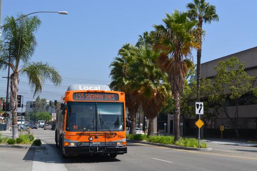 LA_bus_1