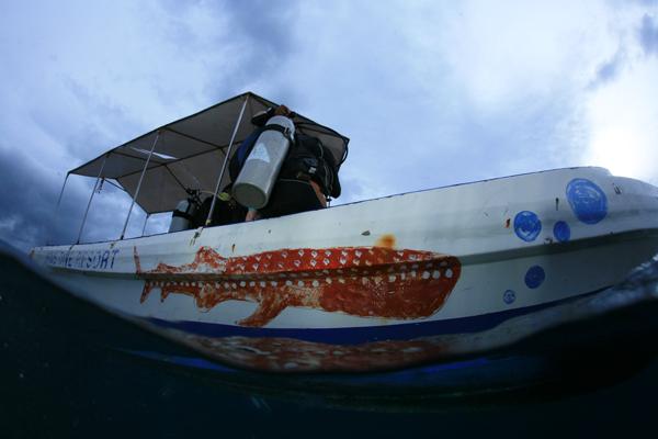 diving_moalboal_4