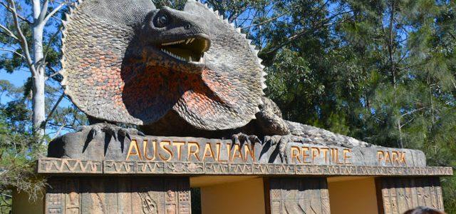 オーストラリアン レプタイル パークへ行ってきた! from シドニー