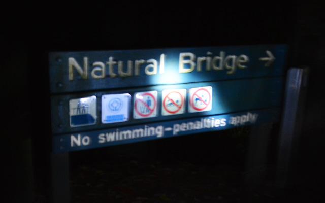 ナチュラルブリッジ