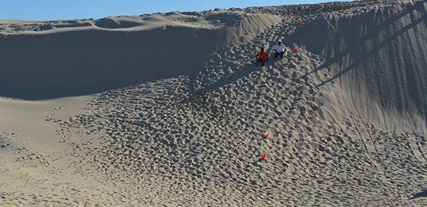 砂丘でサンドボーディングしてきた!in ポート・スティーブンス