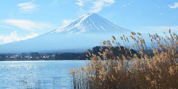 東京から日帰りで河口湖へ行ってきた! -行き方と感想-